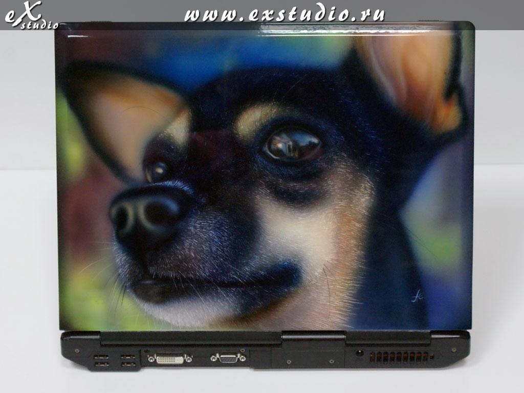 Аэрография ноутбук, собака